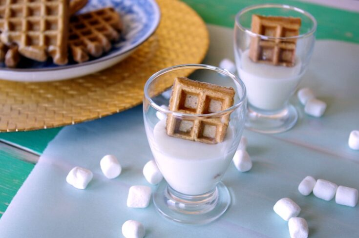 Hot Chocolate Waffles with Marshmallow Dip